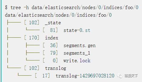Elasticsearch存储深入详解